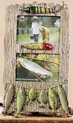 Resin Fishing Lure Picture Frame